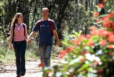 Image of a man and woman walking hand in hand on a nature trail